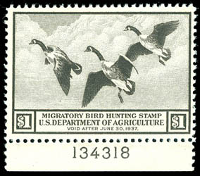 Canada goose hunting license california cost for Bc fishing license